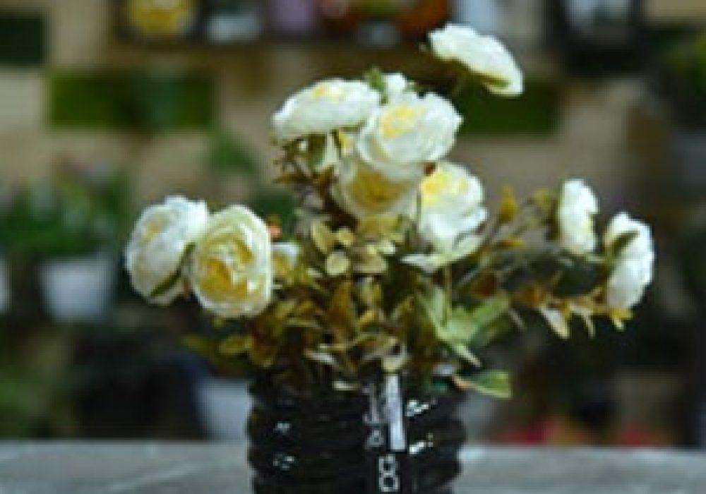 Rose-bonzai