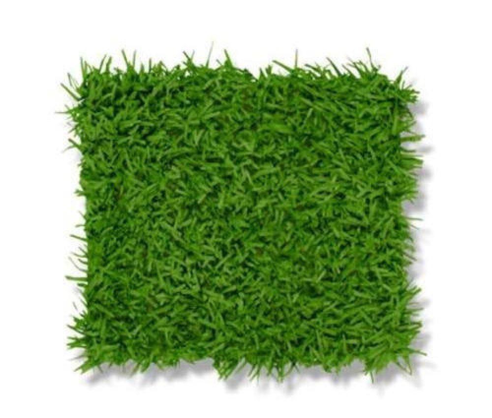 green-grass-mat-500×500