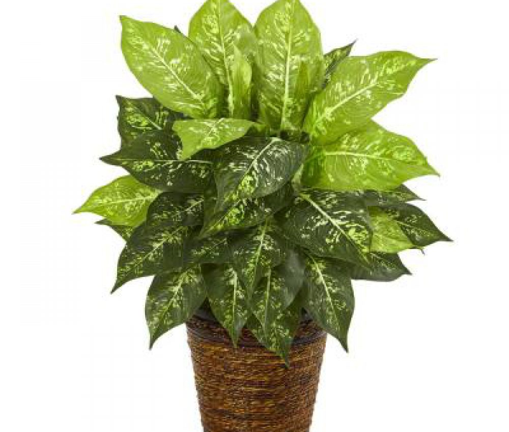 nearly-natural-artificial-plants-8871-64_400